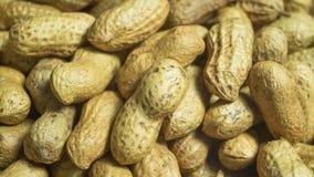 Amendoins, roasted com sal na vista macro Imagens de Stock