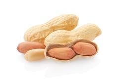 Amendoins secados Imagem de Stock Royalty Free