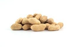 Amendoins secados no close up Imagem de Stock