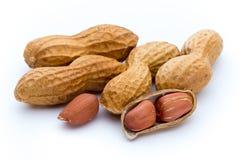 Amendoins secados no fundo branco Fotos de Stock
