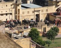 Amer Fort Image stock