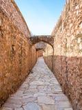 Amer Fort in Jaipur Stock Image