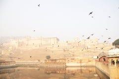 Amer Fort, Jaipur, Rajastan, India 2012, il secondo gennaio, Fotografie Stock