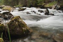 Amerbach river Stock Photo