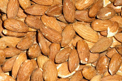 America almond nut Stock Photography
