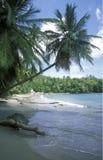 AMERICA CARIBBIAN SEA DOMINICAN REPUBLIC Stock Images