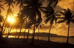 AMERICA CARIBBIAN SEA DOMINICAN REPUBLIC Royalty Free Stock Photos