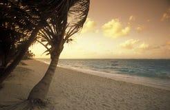 AMERICA CARIBBIAN SEA DOMINICAN REPUBLIC Stock Photography