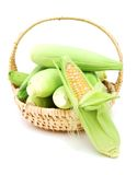 America corns Royalty Free Stock Photos