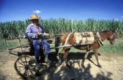 AMERICA CUBA HOLGUIN Stock Image