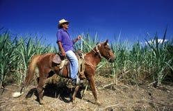AMERICA CUBA HOLGUIN Stock Photo