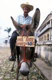 AMERICA CUBA TRINIDAD Royalty Free Stock Photos