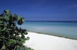 AMERICA CUBA VARADERO BEACH Royalty Free Stock Photos