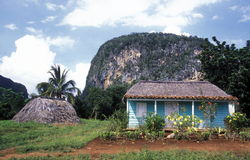 AMERICA CUBA VINALES Stock Photography
