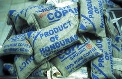 AMERICA LATINA HONDURAS COPAN Immagine Stock