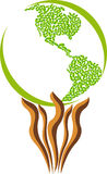 america liść logo Fotografia Royalty Free
