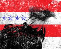 Americac election Royalty Free Stock Photography