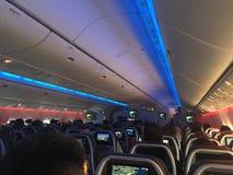 American Airlines interior Fotografía de archivo