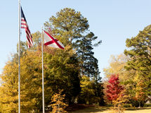 American And State Of Alabama Flags Royalty Free Stock Photography