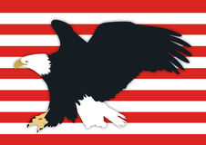 American Bald Eagle. With red stripes background Stock Photos