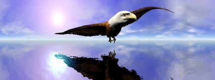 American bald eagle - 3D render stock illustration
