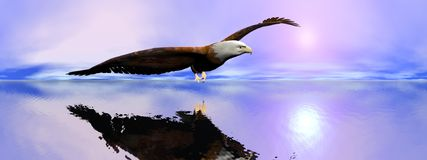 American bald eagle - 3D render vector illustration