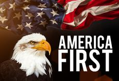 american bald eagle flag Στοκ εικόνες με δικαίωμα ελεύθερης χρήσης
