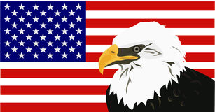 American Bald Eagle with Flag stock illustration