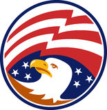American Bald Eagle With Flag. Illustration of an American bald eagle head looking to side with stars and stripes flag set inside circle Royalty Free Stock Images