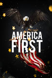 american bald eagle flag απεικόνιση αποθεμάτων