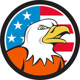 American Bald Eagle Head Angry Flag Circle Cartoon Stock Photography
