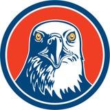 American Bald Eagle Head Circle Retro Stock Images