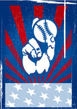 American baseball vector Stock Image