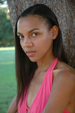 American Beauty. African American beautiful girl Stock Photography