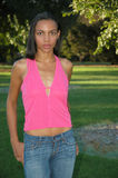 American Beauty. Beautiful African-American Female Royalty Free Stock Photography