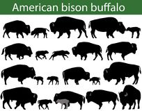 American bison buffalo silhouettes Stock Images