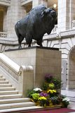 American bison statue. This statue weighs 5,000 lbs and was dragged in on a block of ice in the middle of winter royalty free stock photos