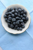 American blueberries Royalty Free Stock Images