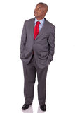 American business man standing Royalty Free Stock Photos
