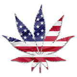 American cannabis leaf Stock Image