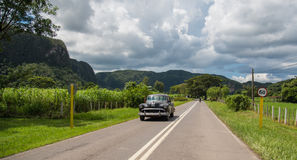 American car in Vinales Royalty Free Stock Photos
