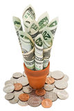 American cash and coins Stock Photography
