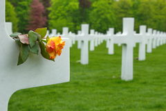 American Cemetery in Luxembourg - marble crosses stock images