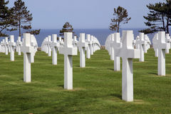 American Cemetery at Normandy Royalty Free Stock Image