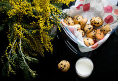 American chocolate chips cookie Stock Images