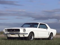 American Classic Car - Horse Power 1967. A white american classic car from 1967 parked in a field Royalty Free Stock Images