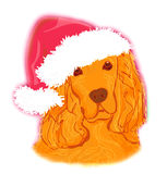 American cocker spaniel laying down wearing santa hat Stock Photo