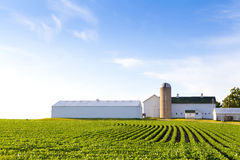 American Country Farm royalty free stock photo