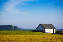 American Country Landscape Royalty Free Stock Photo