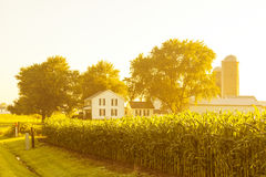 American Countryside Landscape Royalty Free Stock Image